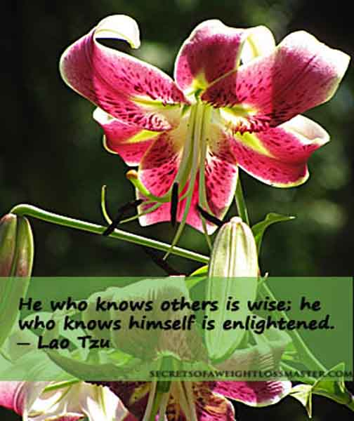 He who knows others is wise; he who knows himself is enlightened. ~ Lao Tzu