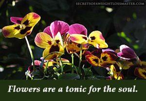 flower_tonic